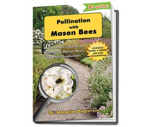 Pollintion with Mason Bees