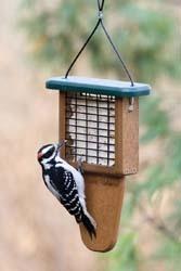 Wild Birds Unlimited - Nature Shop