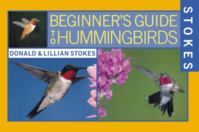 Stokes Beginners Guide Hummingbirds