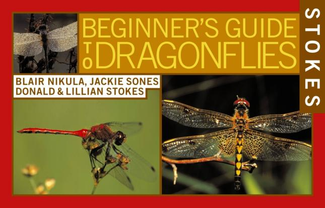 Stokes Beginners Guide Dragonflies