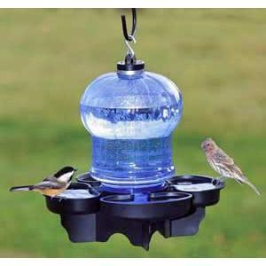 First Nature Birdbat & Waterer