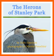 The Herons of Stanley Park